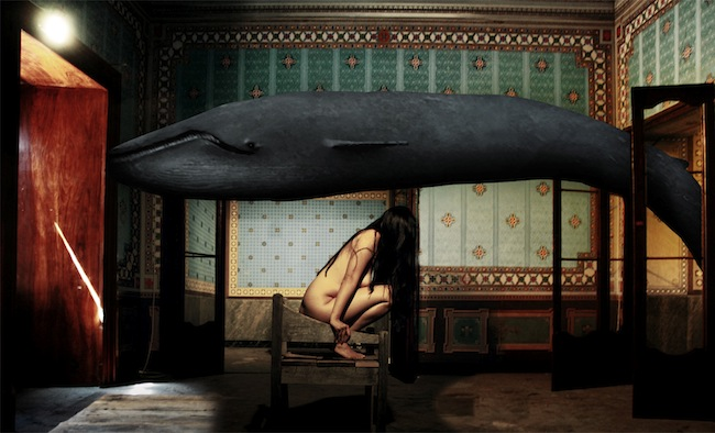 f.veron_a whale came to me and told me a secret