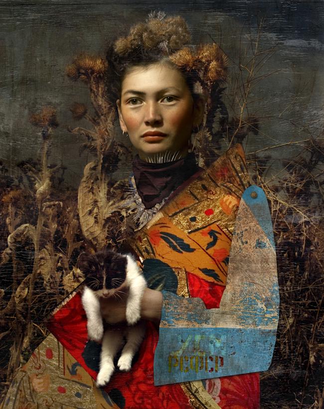 shola+cat_stor