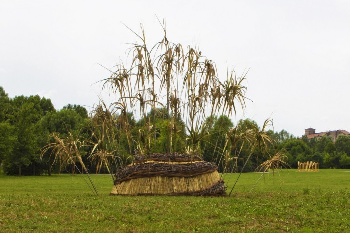09- ECOISMI2014 - Iter Taraxacum - Federica Venier